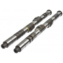176-X Custom Camshaft Set