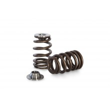 KVS42-K Valve Spring and Titanium Retainer Set