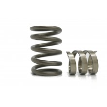 KVS265 High Performance Valve Spring Set