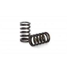KVS63 High Performance Single Valve Spring Set